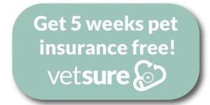 Get 5 weeks pet insurance free! Vetsure
