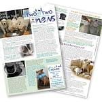 Newsletter 19 20